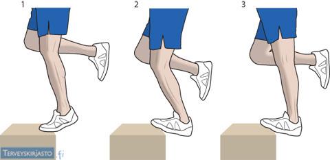 Akillesjänteen harjoittelu